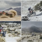 Price is right at Dakar as Peterhansel and Patronelli purr