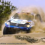 SOUTH AFRICANS STAR AT DAKAR