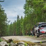 New push to get privateers back in WRC