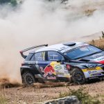 LOEB RELISHES GOING BACK TO ROOTS