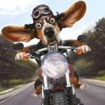 DIT IS WEER TYD VIR DIE 2015 RFS MOTORFIETSBESPARINGSRIT.